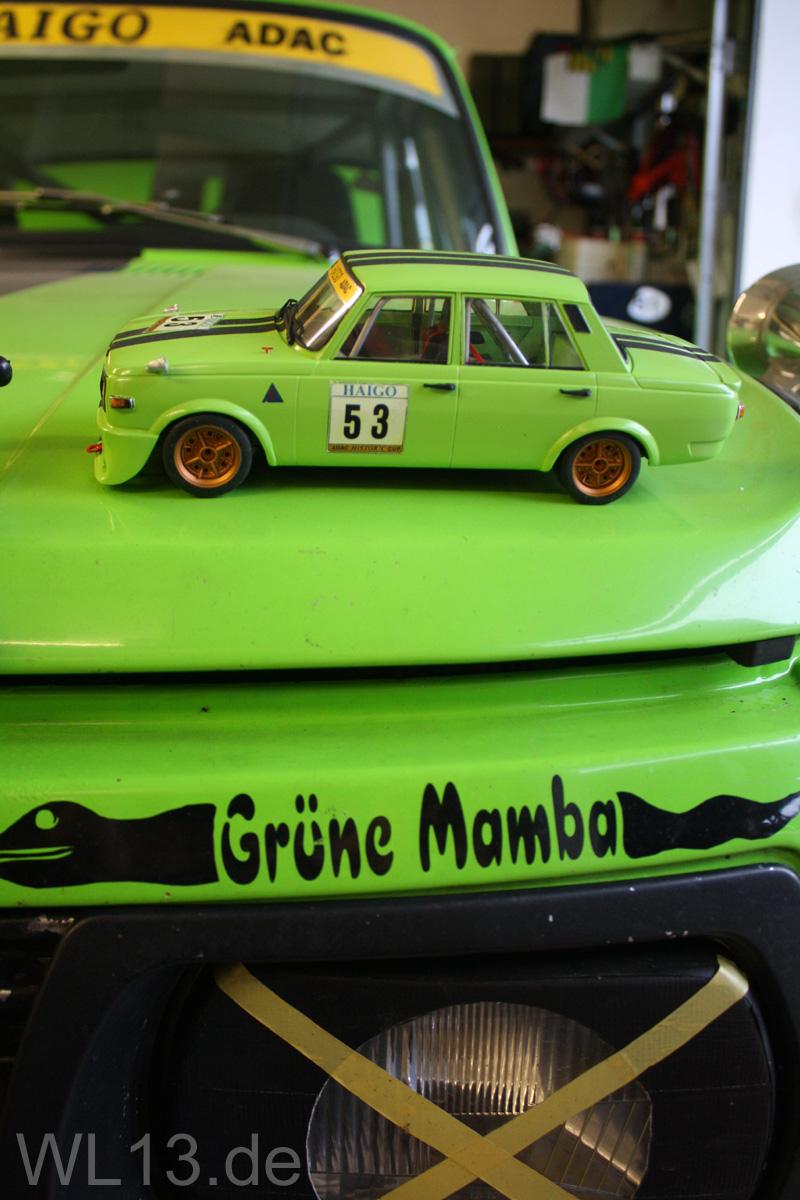 Vorsicht, GIFTIG... Die Grüne Mamba IMG_6848